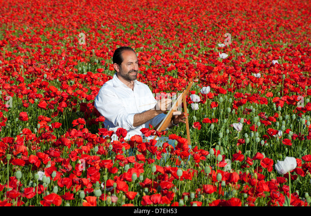 Painting Holiday outdoors man in Fields of wild Poppies with Spain - Stock Image