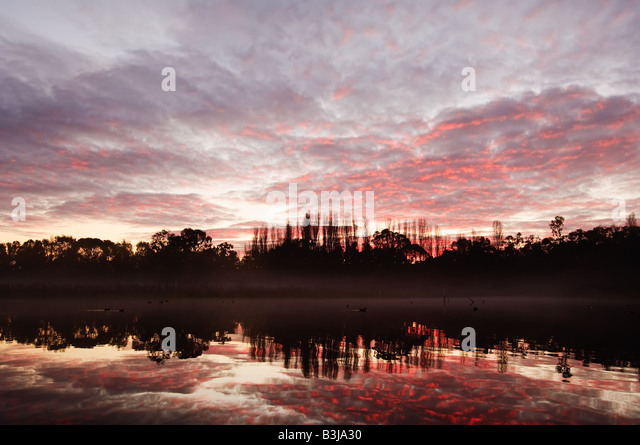 Swimming Stadium Stock Photos Swimming Stadium Stock Images Alamy