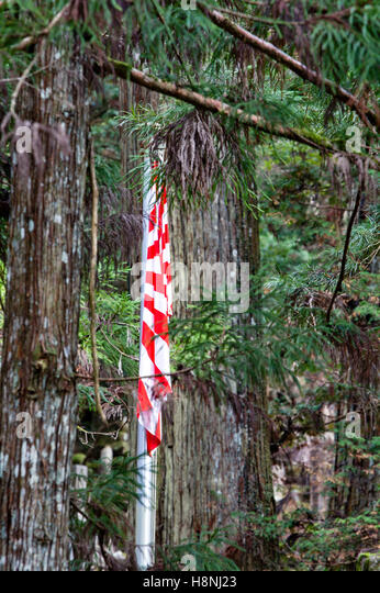 Koyasan, Japan, Okunoin cemetary, Japanese flag hanging and folded on itself at war memorial. Background dark cedar - Stock Image