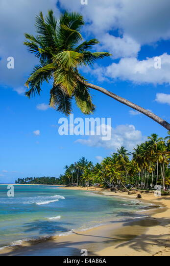 Casa Blanca Beach, Las Terrenas, Dominican Republic, West Indies, Caribbean, Central America - Stock Image