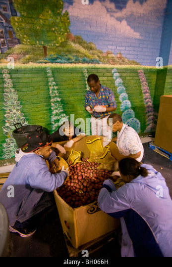 Volunteer workers sort potatoes at the Gleaners Food Bank in Detroit, Michigan during recession in the automotive - Stock Image