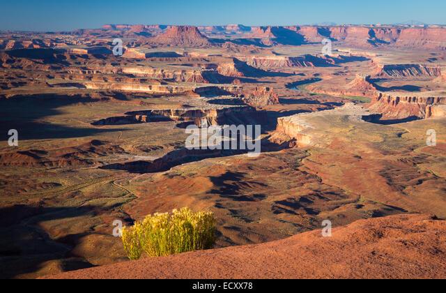 Grandview Point in Canyonlands National Park, Utah - Stock-Bilder