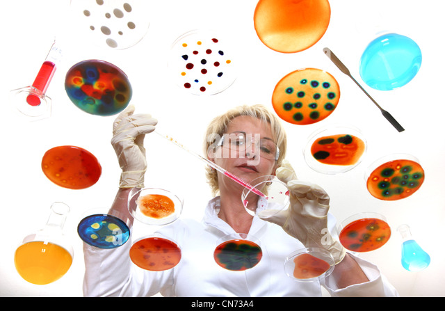 Laboratory technician working in the lab with bacteria cultures in Petri dishes. Seen through a glass table. - Stock-Bilder