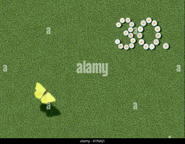 number written with daisies 30th 30 th spelled out prewritten edited - Stock Image