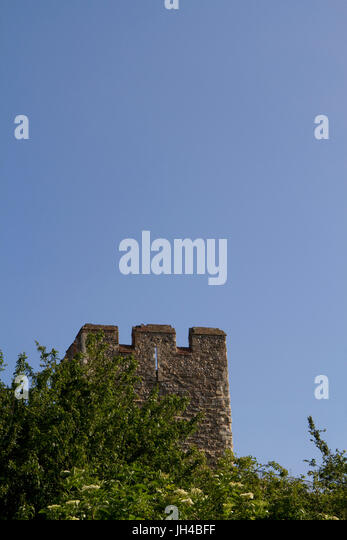 A tower of Framlingham castle poking out of greenery against a blue sky - Stock Image