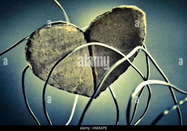 Cardboard heart imprisoned for a wire, problems in relationships, family and friendship concept. - Stock Image