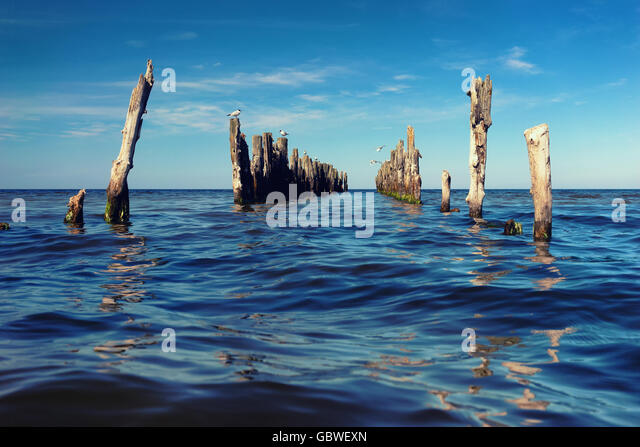Seagulls flying over piles of abandoned pier in the Baltic Sea with waves on the horizon - Stock Image