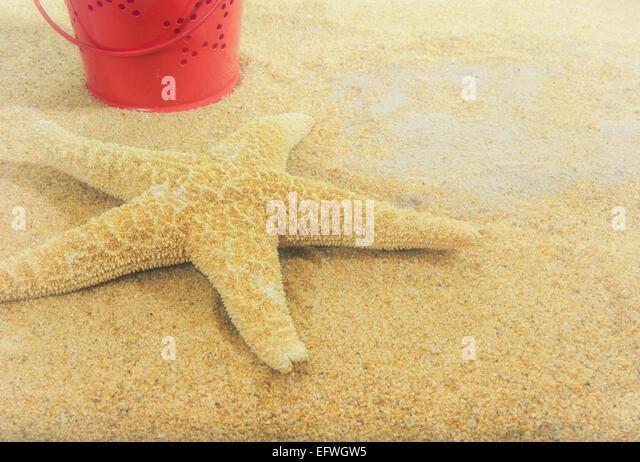 Vintage red tin bucket star shaped cutouts sandy beach starfish summer holiday concept Retro filters faded nostalgic - Stock-Bilder