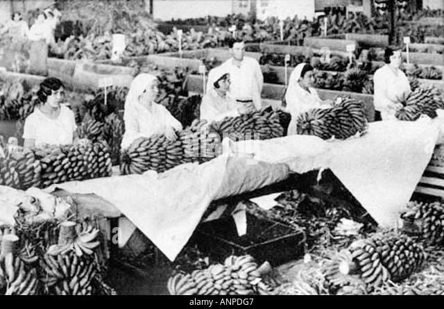 Archive photograph of women preparing bananas for export. The Molino De Gofio ethnographic museum in Hermigua, La - Stock-Bilder