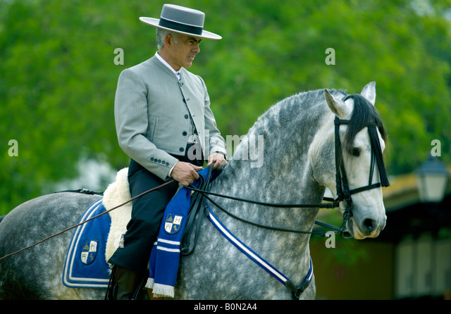 Fine Spanish horseman in traditional costume on a dapple grey horse, Jerez de la Frontera, Andalucia, Spain - Stock Image