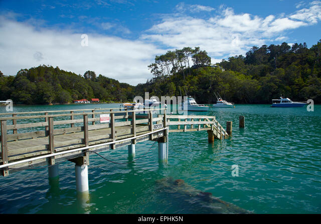 Omaha Cove, Leigh, North Auckland, North Island, New Zealand - Stock Image