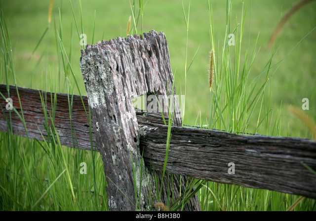 Post and rail fence - Stock Image