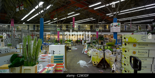 New Covent Garden Flower Market, Nine Elms, London. - Stock Image