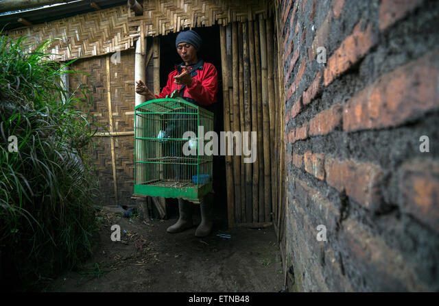 Tenggerese Man holding a bird cage, Cemoro Lawang, East Java, Indonesia - Stock Image