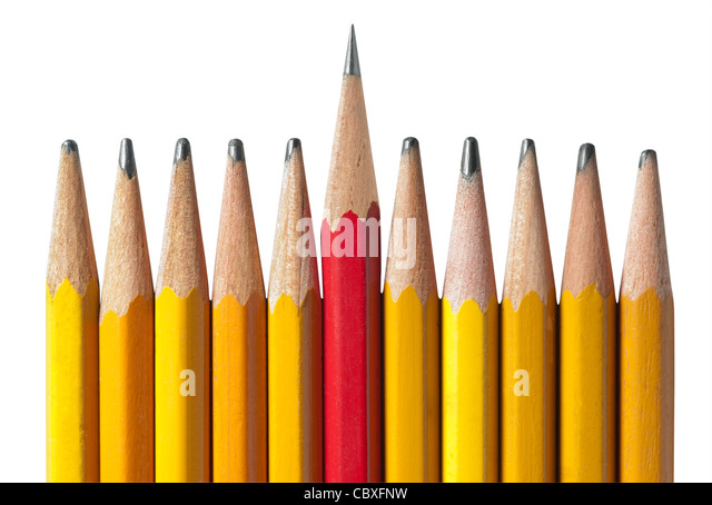 Sharpest pencil of the bunch: metaphor for leadership, intelligence, individuality, teamwork and unity. - Stock Image
