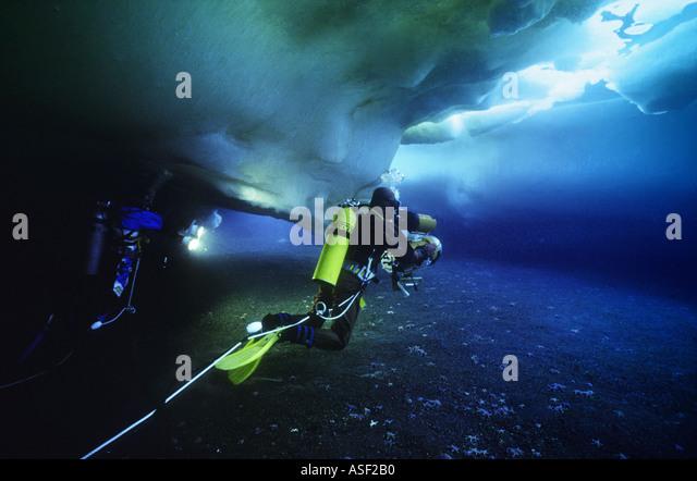 Underwater film crew camera lights diving under sea ice in shallows along shoreline Erebus Bay Ross Island Antarctica - Stock Image