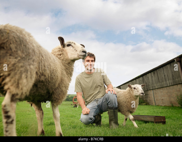 Farmer With Sheep - Stock Image