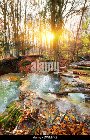 Cascade mountain river in a forest in autumn - Stock Image