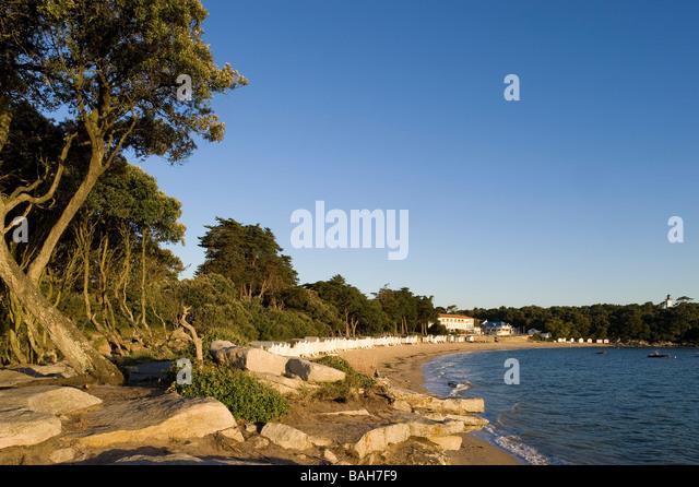 Bois De La Chaise Noirmoutier - Noirmoutier And Dames Stock Photos& Noirmoutier And Dames Stock Images Alamy