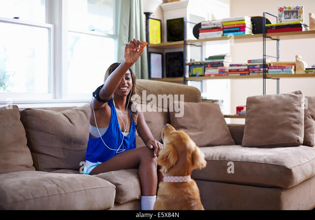 Young woman taking a training break, holding up biscuit for dog in sitting room - Stock Image