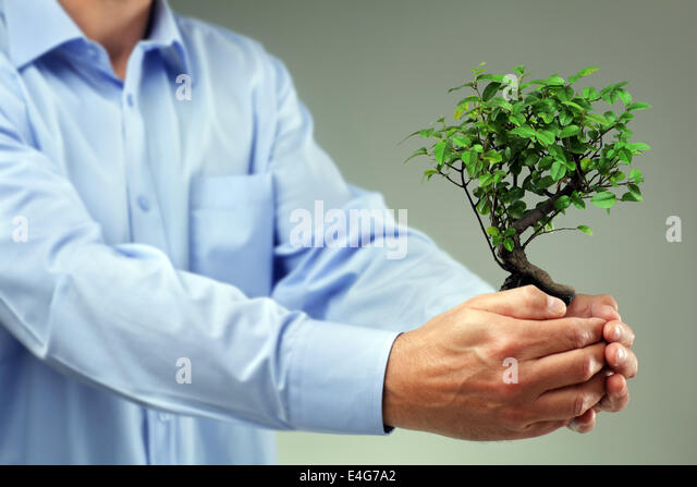 Taking care of new development - Stock Image