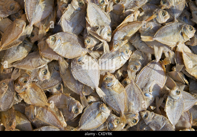 Dried fish for sale on market stall, Nilaveli, Trincomalee,  Sri Lanka, Asia - Stock Image