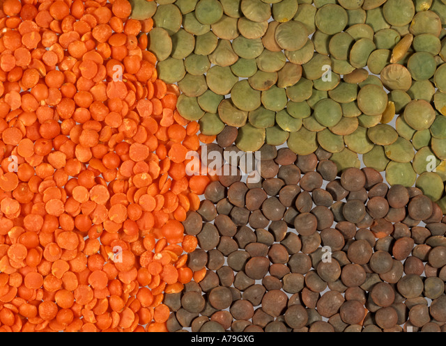 Red green and brown lentils prepared for cooking - Stock Image