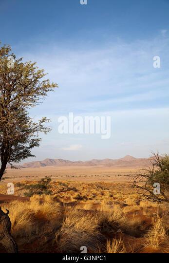Namib Desert Star Dune Camp Views in Namibia - Stock Image