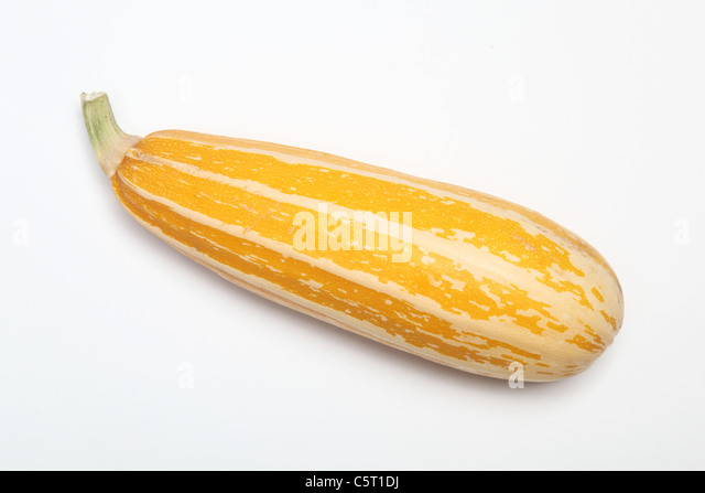 A yellow Italian Marrow - Stock Image
