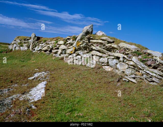 Stone-faced earthen field bank (clawdd) bordering W coastal path on Bardsey Island, Gwynedd, W of Carreg Fawr farmhouse. - Stock Image