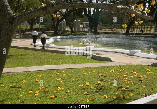 Caribbean Barbados Bridgetown, Queens Park - Stock-Bilder