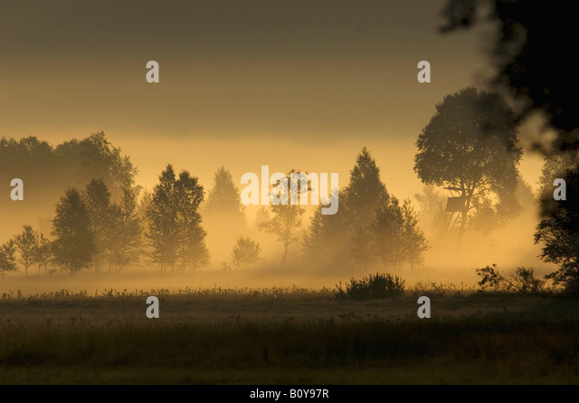Germany, Landscape in mist - Stock Image