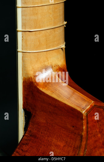 Detail of the neck of a seven-string bass viola da gamba - Stock Image