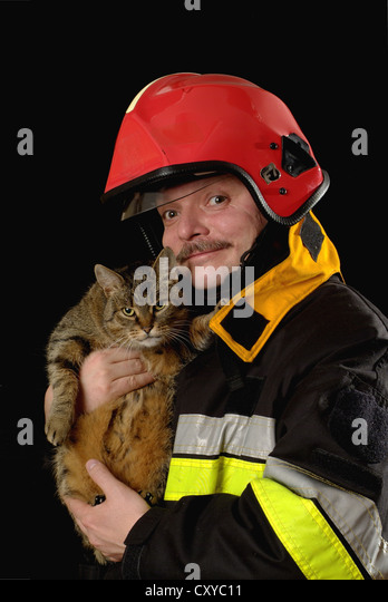 Firefighter with a rescued cat - Stock Image