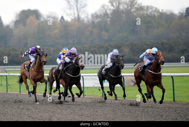Horse Racing - Lingfield Park Racecourse - Stock Image