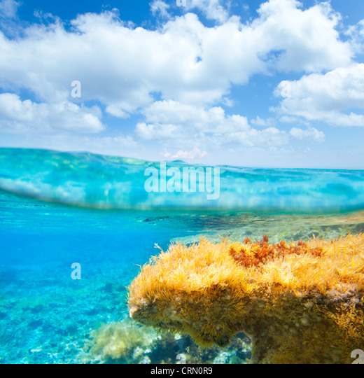 Ibiza Formentera underwater under over waterline blue sky seascape - Stock Image