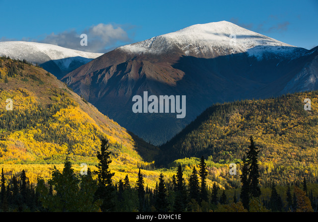 autumn colours along the South Klondike Highway and a shadow resembling the head of a wolf on Young Peak British - Stock-Bilder