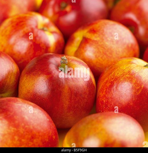 group shot of nectarines - Stock Image