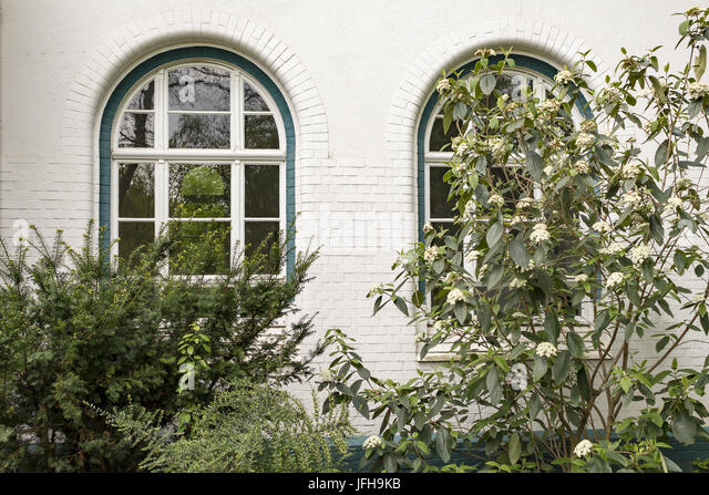 2 nostalgic windows covered by shrubs - Stock Image