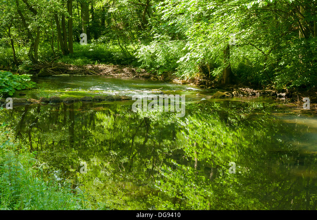 Reflections in Dovedale, Derbyshire, England - Stock Image