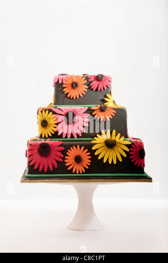 black tiered cake with colourful daisy flowers on stand on white background - Stock Image