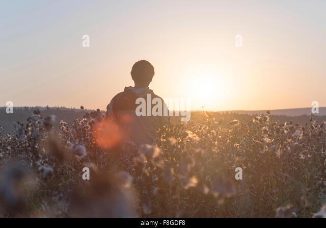 Mari man standing in field - Stock Image