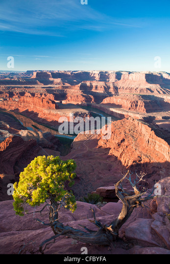 USA, United States, America, Utah, Canyonlands Park, Dead Horse, Point, Colorado river, adventure, big, deep, dry, - Stock Image