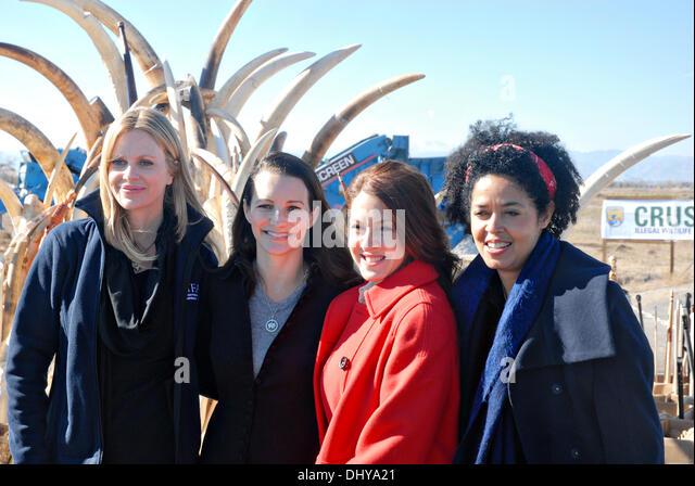 Celebrities Kristin Bauer, left, Kristin Davis, Joely Fisher, and Dr. Paula Kahumbu, CEO of WildlifeDirect, pose - Stock Image