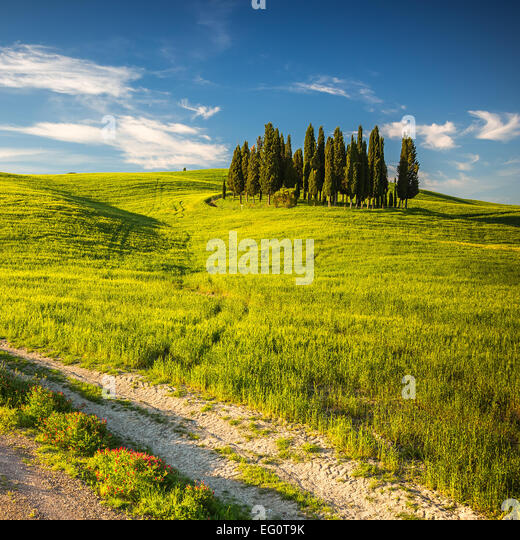 Tuscany at spring - Stock Image