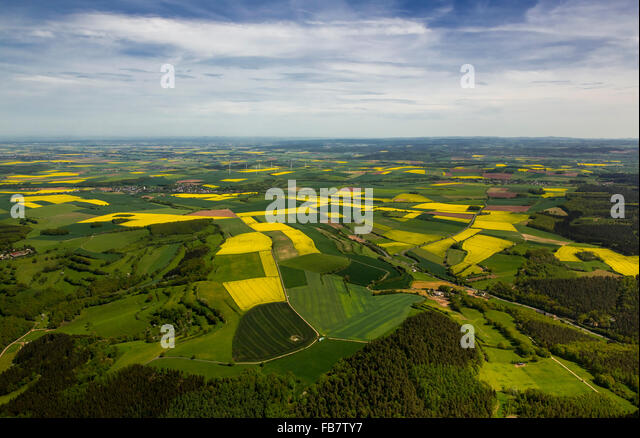 Aerial view, agricultural cropland and canola fields in Heimbach, meadows, pastures, sky with Stratus Cirrus, Heimbach, - Stock Image