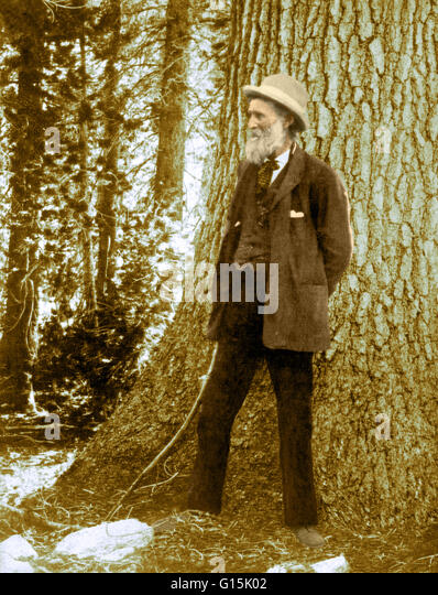 john muir forestry sierra club essay What would muir say about the sierra club being led by michael brune, accountant-in-chief and old-growth forest logging apologist on the occasion of muir's 175th.