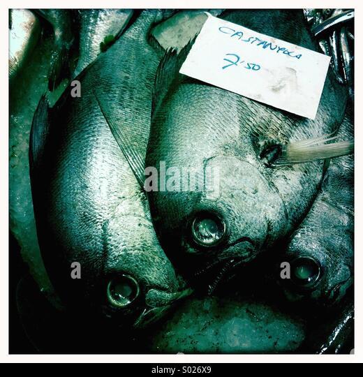 Fish market, Barcelona - Stock Image
