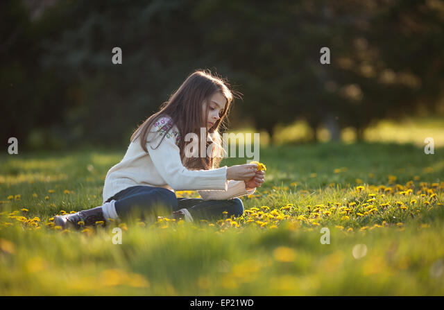 Girl picking dandelions - Stock Image