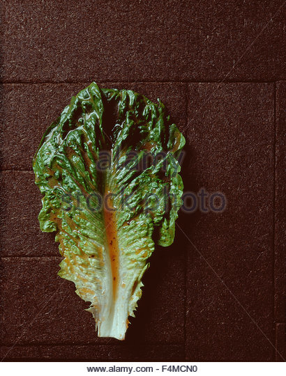 Romaine lettuce leaf with dressing - Stock Image